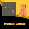 Escapa robot