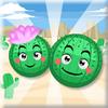 Rollo de cactus
