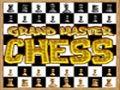 Gran maestro de ajedrez