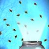 El colector de Firefly