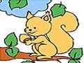 Ardilla en la rama de un árbol