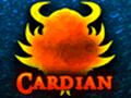 Cardian, el juego de cartas.
