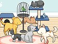 Centro de mascotas